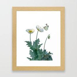 Spade's White Poppies Framed Art Print