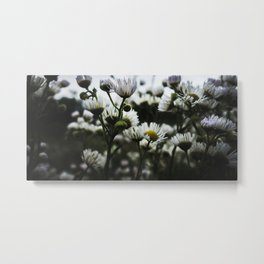 moonflowers Metal Print