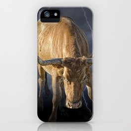 Bull Market, symbol of the increase in financial markets iPhone Case