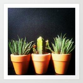 Mini Plants Pots Art Print