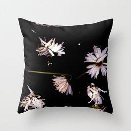 Dark Daisies | Black Botanical, Dark Academia Wall Art, Real Daisy Flowers, Wildflowers Photo Throw Pillow