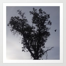 Flying crow heart tree Art Print