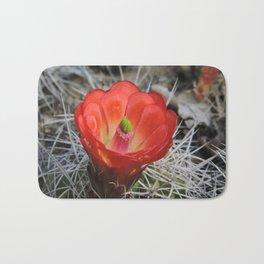Red Blossom on a Hedgehog Cactus Bath Mat