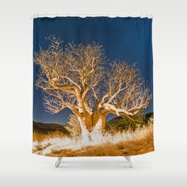 Boab and Stars Shower Curtain