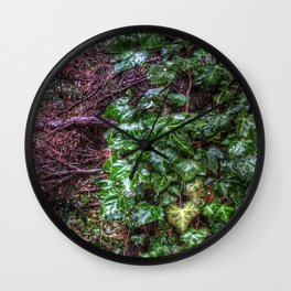 Gnarled vines & Ivy on a Misty Day Wall Clock