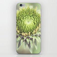 Macro Hypnosis iPhone & iPod Skin