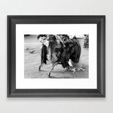 homeless cat Framed Art Print