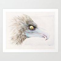 Icelandic Eagle Art Print