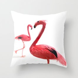 Pink Flamingos with Heart Throw Pillow
