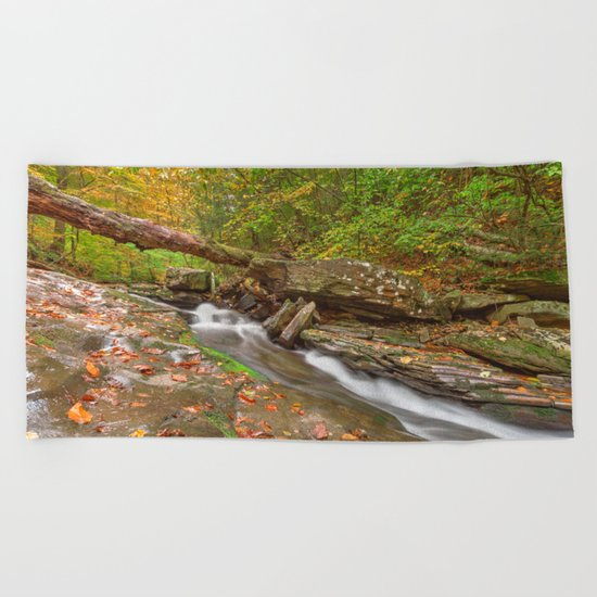 Ricketts Glen Autumn Stream Beach Towel