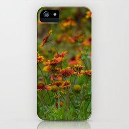 Indian Blanket iPhone Case