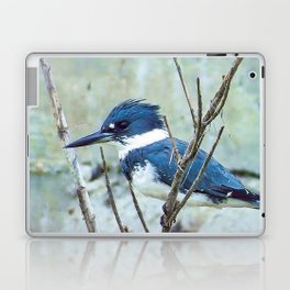 Young Belted Kingfisher (Repost) Laptop & iPad Skin