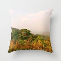 Scenic Steep Throw Pillow