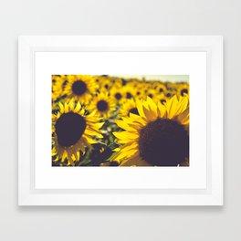 Summer Sunflower Love Framed Art Print