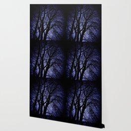 Barren Tree Branches Wallpaper