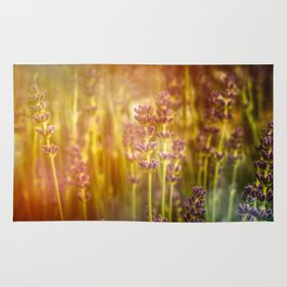 Scent of Summer Rug
