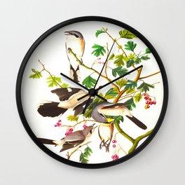 Great cinereous Shrike, or Butcher Bird John James Audubon Birds Vintage Scientific Illustration Wall Clock
