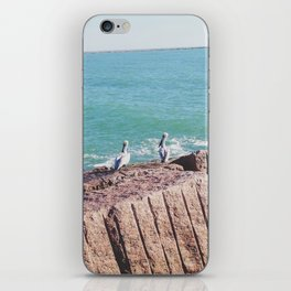 009 iPhone Skin