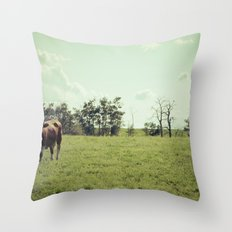 ...my life is like that... Throw Pillow