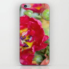 Fiery Red Flowers iPhone Skin