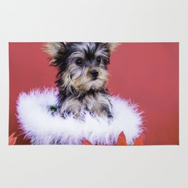 Yorkie Puppy Sitting in a Green Christmas Basket Surrounded by Poinsettia Rug