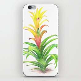 Bromeliad - Tropical plant iPhone Skin