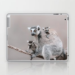RINGTAILED LEMUR FAMILY by Monika Strigel Laptop & iPad Skin