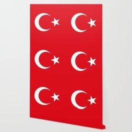 Flag of Turkey - Turkish Flag Wallpaper