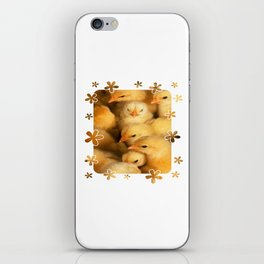 Clutch of Yellow Fluffy Chicks With Decorative Border iPhone Skin