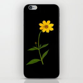 Mary Delany Botanical Vintage Flower Floral Collage Coreopsis Lanceolata iPhone Skin