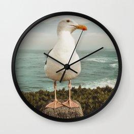 Feathered Resident La Jolla California Wall Clock