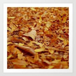 The Autumn leaves Art Print