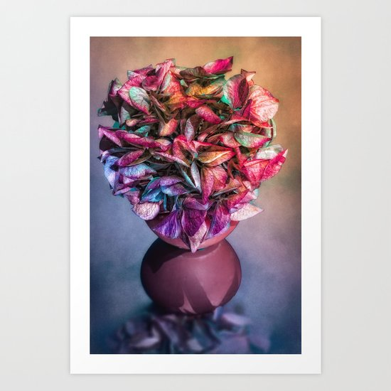 STILL LIFE WITH HYDRANGEA IN A VASE Art Print