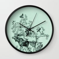 history Wall Clocks featuring Natural History by Jonathan P
