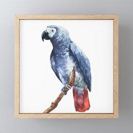 Parrot 05 Framed Mini Art Print