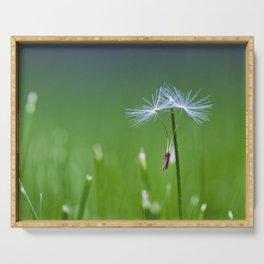 dandelion dance Serving Tray
