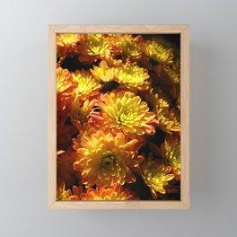Fall Chrysanthemums Framed Mini Art Print