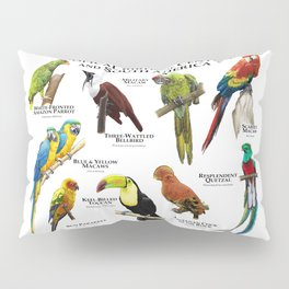 Tropical Birds of South and Central America Pillow Sham