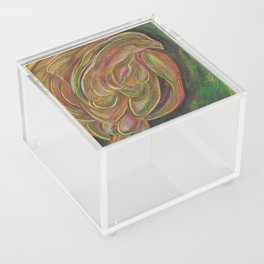Bird Acrylic Box