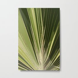 Abstract Palm Frond Metal Print