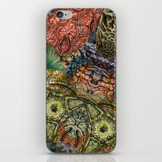 Psychedelic Botanical 1 iPhone & iPod Skin