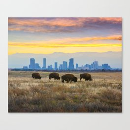 City Buffalo Canvas Print