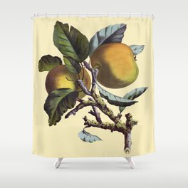 Vintage Apples Shower Curtain