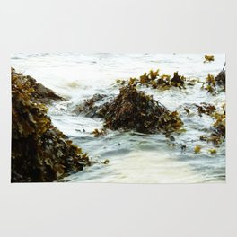 Seaweed Pods Rug