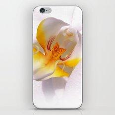 orchid macro IV iPhone & iPod Skin