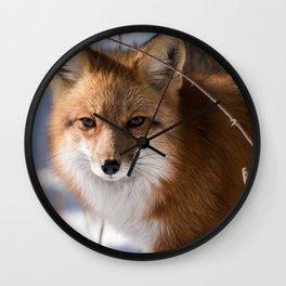 Le regard de la renarde Wall Clock