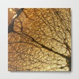 GoldenCola Metal Print