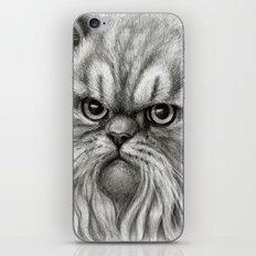 Persian Cat SK072 iPhone & iPod Skin