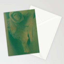 Cow Skull Polaroid Stationery Cards