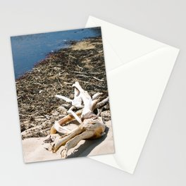 Sand Beach Stationery Cards
